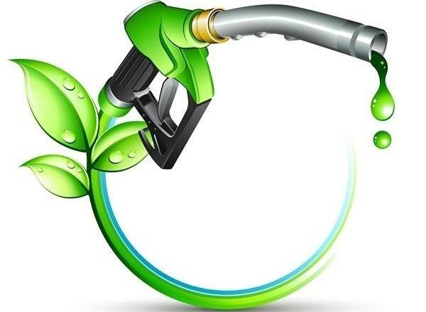 تولید گازوئیل، نفت و کود زیستی