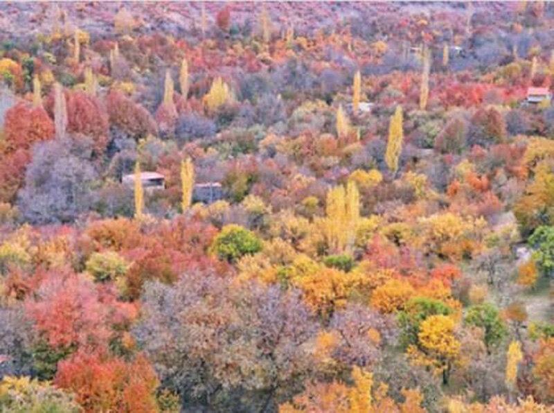 جادوی هزار رنگ پاییز در طبیعت روستای دهبار
