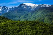 جنگلهای شمال امسال سند نمیگیرد | سازمان جنگلها گرفتن سند برای جنگلهای شمال را در دستور کار ندارد