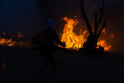 ادامه پیشروی آتش در جنگلهای توسکستان
