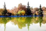 تصاویر | طبیعت پاییزی بوستان ملت تهران