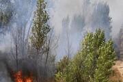 اعزام ۶۵ نیروی جدید برای مهار آتش در توسکستان