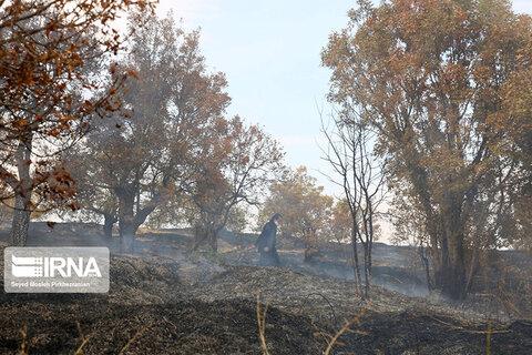 آتشسوزی در کوه آبیدر