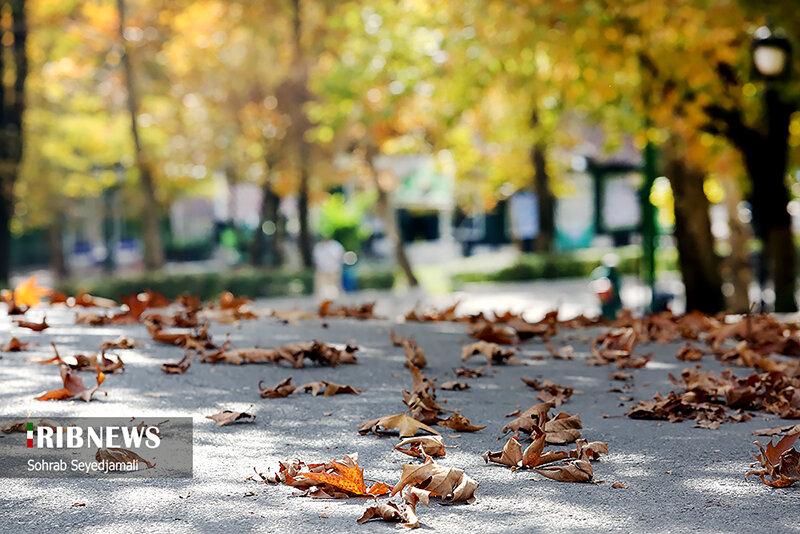 طبیعت پاییزی پارک ملت