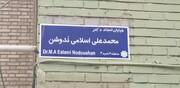 محمدعلی اسلامی ندوشن صاحب خیابان شد | رونمایی از سردیس استاد در ۹۵ سالگی