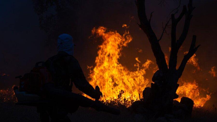 مرگ ۴ مرد روستایی در آتشسوزی جنگلهای فیروزآباد فارس | جنگل فیروزآباد فارس سه روز است میسوزد