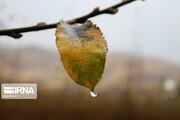 پیشبینی آبان خشک و کمباران  | پاییز امسال یکدرجه گرمتر از حد نرمال