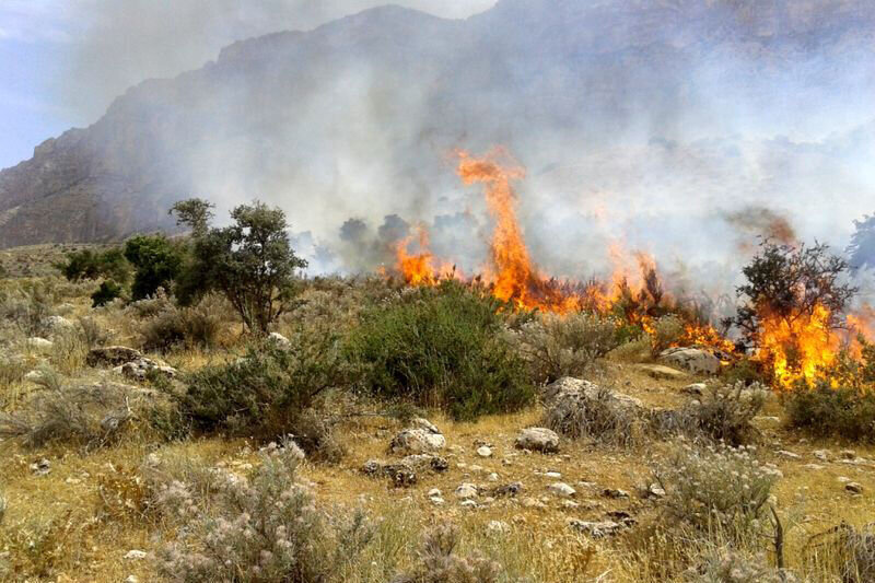 آتشسوزی میانکاله