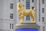 عکس روز| مجسمه طلایی سگ محبوب