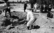 تصویب طرح ساماندهی کفن و دفن اموات کرونا در شیراز