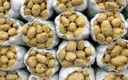 آغاز صادرات سیبزمینی به عراق از مرز پرویزخان