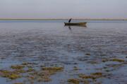 تصاویر   خارج شدن جزیره ۷۰۰ هکتاری از دل خلیج گرگان