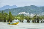 تبدیل تالابها به ویلا هدف جدید کوهخواران و دریاخواران   تشریفاتی به نام کنوانسیون رامسر