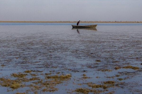 تصاویر | خارج شدن جزیره ۷۰۰ هکتاری از دل خلیج گرگان