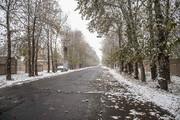 برف و باران همه ایران را فرا میگیرد؛ تهران هم برفی میشود | وضعیت آسمان استانها تا ۹۹/۹/۹