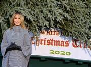 تصاویر | ملانیا بدون همراهی دونالد ترامپ در مراسم تحویل کاج کریسمس کاخ سفید