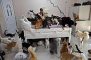 عکس روز | خانه حیوانات