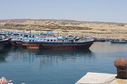 تصاویر | رونق صید و صیادی در سواحل مکران