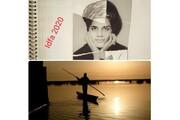 سه جایزه ایدفا برای سینمای ایران