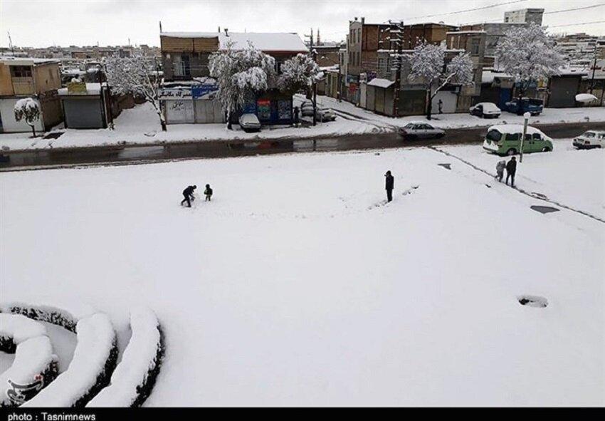 زنجان سفیدپوش
