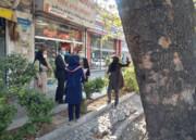 حفاظت از چنارهای خیابان ولیعصر(عج) با همکاری دانشگاه تهران