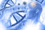 ویرایش ژنها راهی برای پیشگیری از بیماری آلزایمر