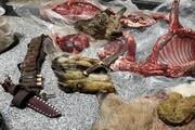 ستگیری شکارچی حرفهای منطقه قمصر و برزک کاشان