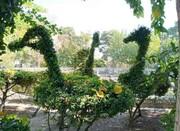 سبز چونمجسمههای طبیعی
