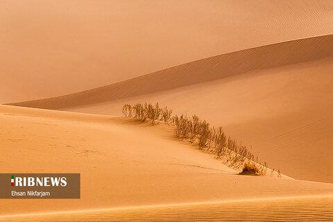 کویر مرنجاب، طبیعتی مسحور کننده