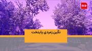 همشهری TV | نگین زمردی پایتخت