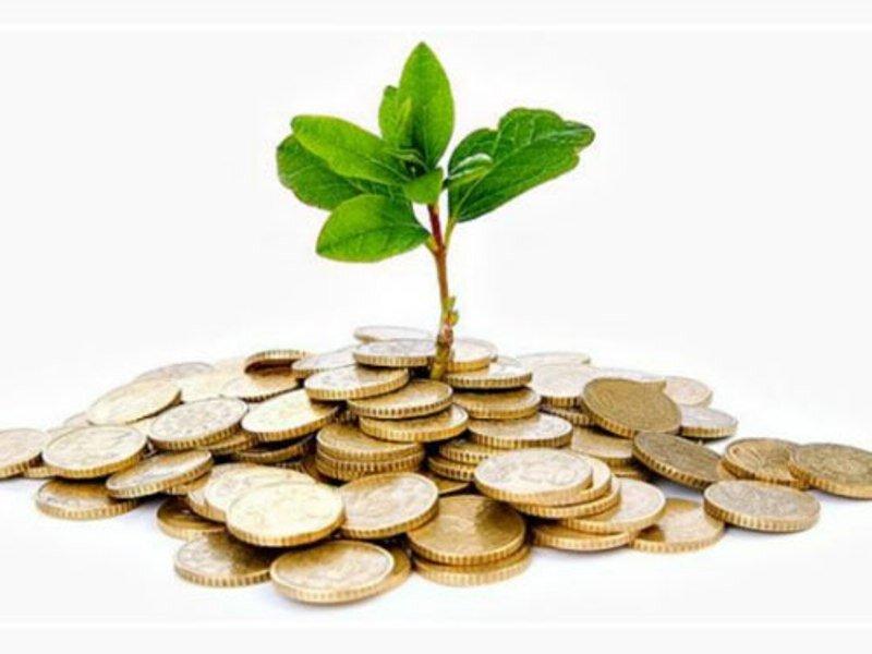 بودجه محیط زیست