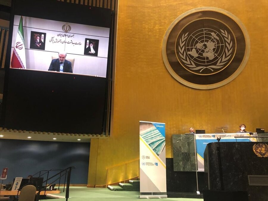 سعید نمکی - سازمان ملل