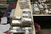 کشف ۴۰ هزار آمپول کمیاب قاچاق در تایباد