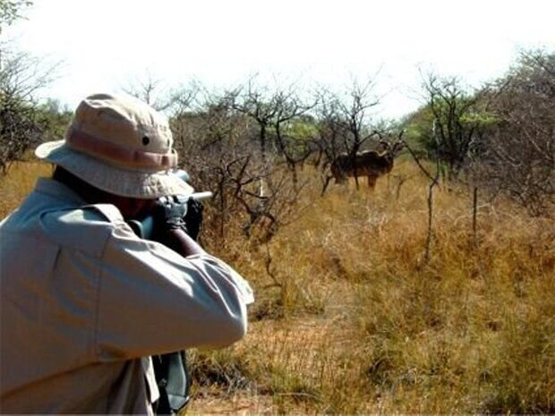 حیاتوحش چهارمحال و بختیاری در تنگنای شکار