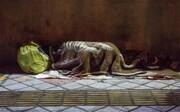 جمعآوری ۱۵۰۰ کارتنخواب، بیخانمان و متکدی از سطح منطقه ۶ تهران