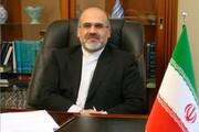 واکنش سفیر ایران در اوکراین به اظهارات اردوغان با شعری از نظامی گنجوی