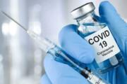 آغاز تست انسانی واکسن ایرانی کرونا از همین هفته | واکسن خارجی کرونا به چه کسانی میرسد؟