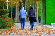 کاهش ۳۶ درصدی ازدواج و افزایش ۲۸ درصدی طلاق در ایران