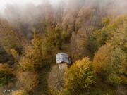 آغاز به کار پایش هوایی جنگلهای هیرکانی در مازندران