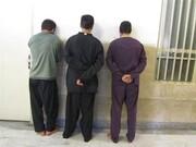 ۱۳۲ سارق در سرپلذهاب دستگیر شدند