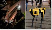 سگ جدید رباتی در استخدام پلیس ا با قابلیتهای شگفتانگیز این نیروی جدید آشنا شوید