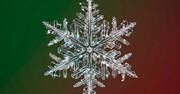تصاویری بینظیر و دیدنی از دانههای برف