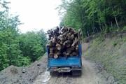 قاتلان درختان جنگلی در شیراز بازداشت شدند