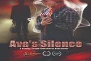 موفقیت فیلمساز لرستانی در جشنواره آمریکایی