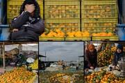 تیر حجرهداران پایتخت در چشم باغداران مازنی