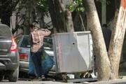 تهران چند کودک زبالهگرد دارد ؟ | آمار هولناک کودکان کار سراسر کشور