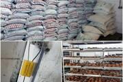 کشف ۳۷ تن آرد فاسد از کارخانه تولید کیک و کلوچه در اردبیل
