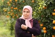 تفاوت خانه سبز با پدرسالار از نگاه اکرم محمدی