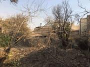 بوستانی در دل خرابههای «باغ کیهانی» متولد میشود