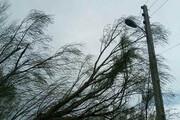 توفان ۹۰ کیلومتری مهمانک را درنوردید